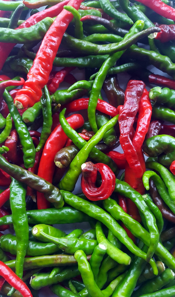 Thai pods - Dartmoor chilli farm