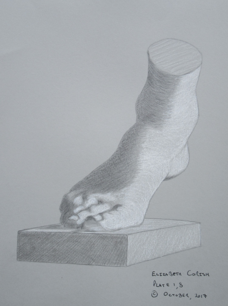 The foot of the Medici Venus