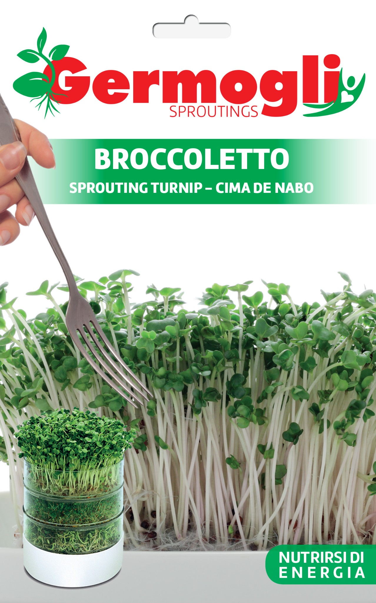 Sprouting seeds broccoletto