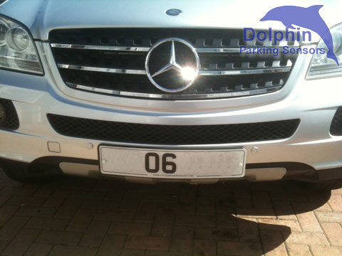 mounted either side of the number plate