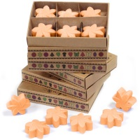 Mango Fruits Luxury Soy Wax Melts
