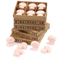 Old Ginger Luxury Soy Wax Melts