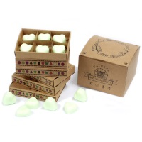 Watermelon Fresh Luxury Soy Wax Melts
