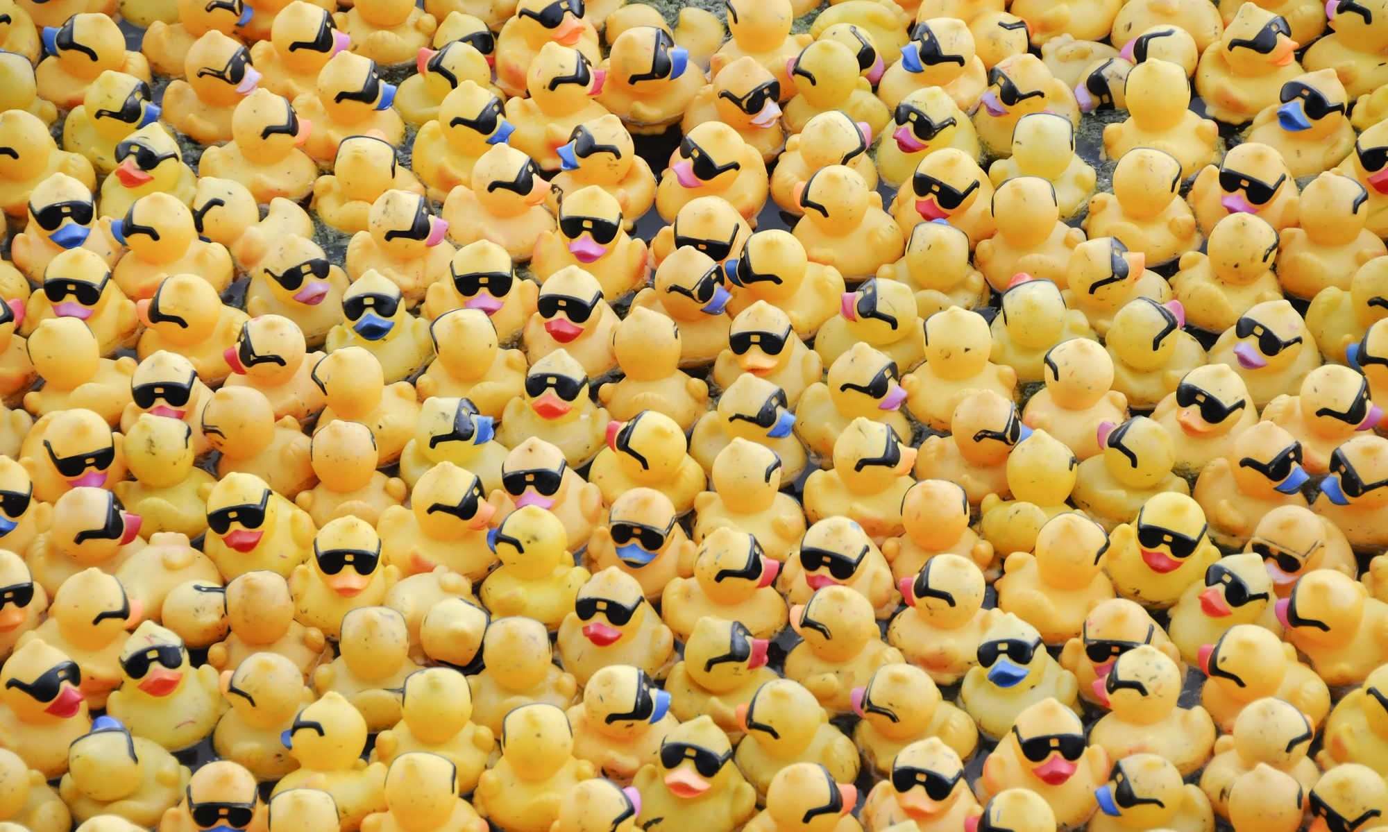 Wholesale Rubber Ducks